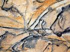 Cine Sesc exibirá documentários sobre pinturas rupestres