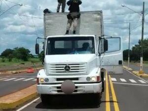 Policiais encontram 785 kg de maconha em caminhão baú