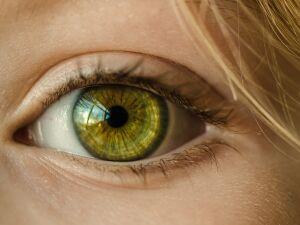 Diagnóstico precoce pode evitar cegueira pelo glaucoma