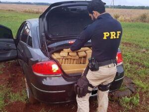 PRF apreende 392kg de maconha e prende traficante que tentou fugir