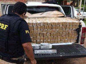 Mais de uma tonelada de maconha é apreendida pela PRF e Polícia Civil