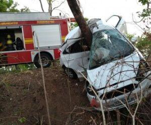Carro bate em árvore e duas pessoas morrem na BR-262