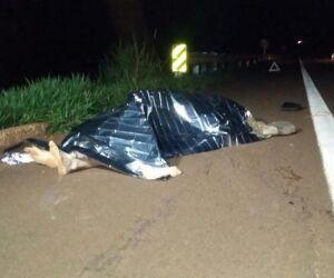 Homem é encontrado morto com sinais de atropelamento na MS-386