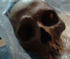 Após violar túmulo jovem furta crânio e esconde em matagal