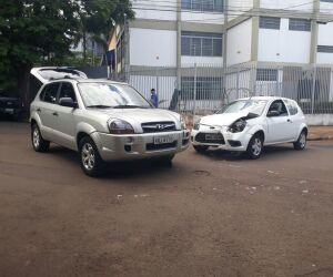 Árvore impede motorista de ver sinalização e acidente acontece
