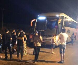 Ônibus sai da pista depois que motorista tenta desviar de animal