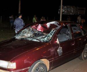 Cavalo atravessa pista e causa acidente em Nova Andradina