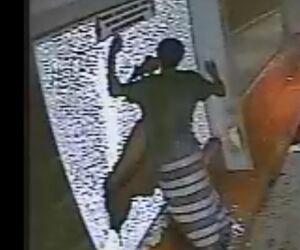 Vídeo: câmera de segurança registra vândalo depredando PegFácil