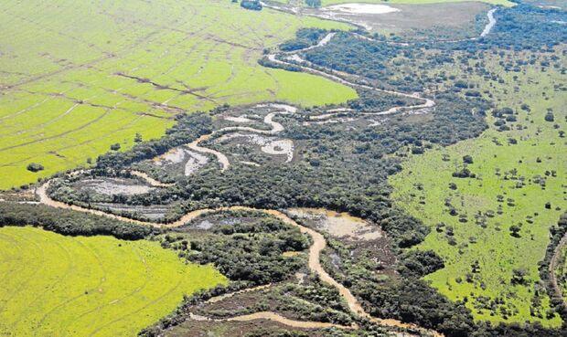 Apresentação da restauração da bacia Guariroba acontece nesta semana