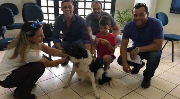 Após três meses desaparecido, cachorro retorna ao lar