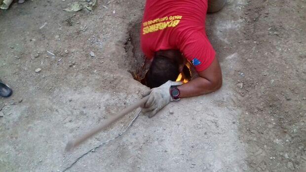 Bombeiros resgatam gato que caiu em fossa