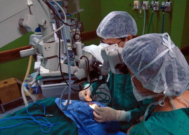 Dia Mundial de Doadores de Medula Óssea é comemorado neste sábado