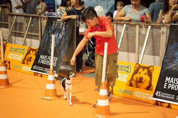 Termina hoje o Show Pet Brasil