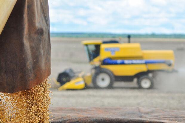 Safra de soja em MS no ciclo 2019/2020 poderá ser reduzida
