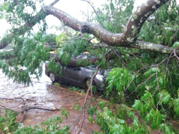 Tempestade deixa rastro de destruição em Costa Rica e Chapadão do Sul