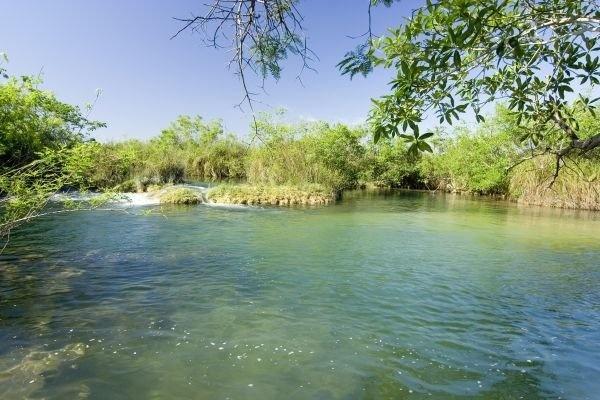 Resultado de imagem para rio formoso