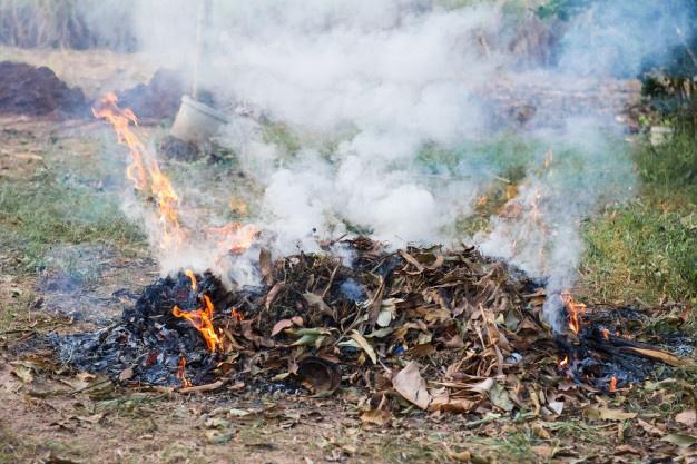 Resultado de imagem para ateia fogo lixo na rua